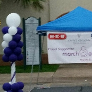 March of Dimes Brownsville – Columns